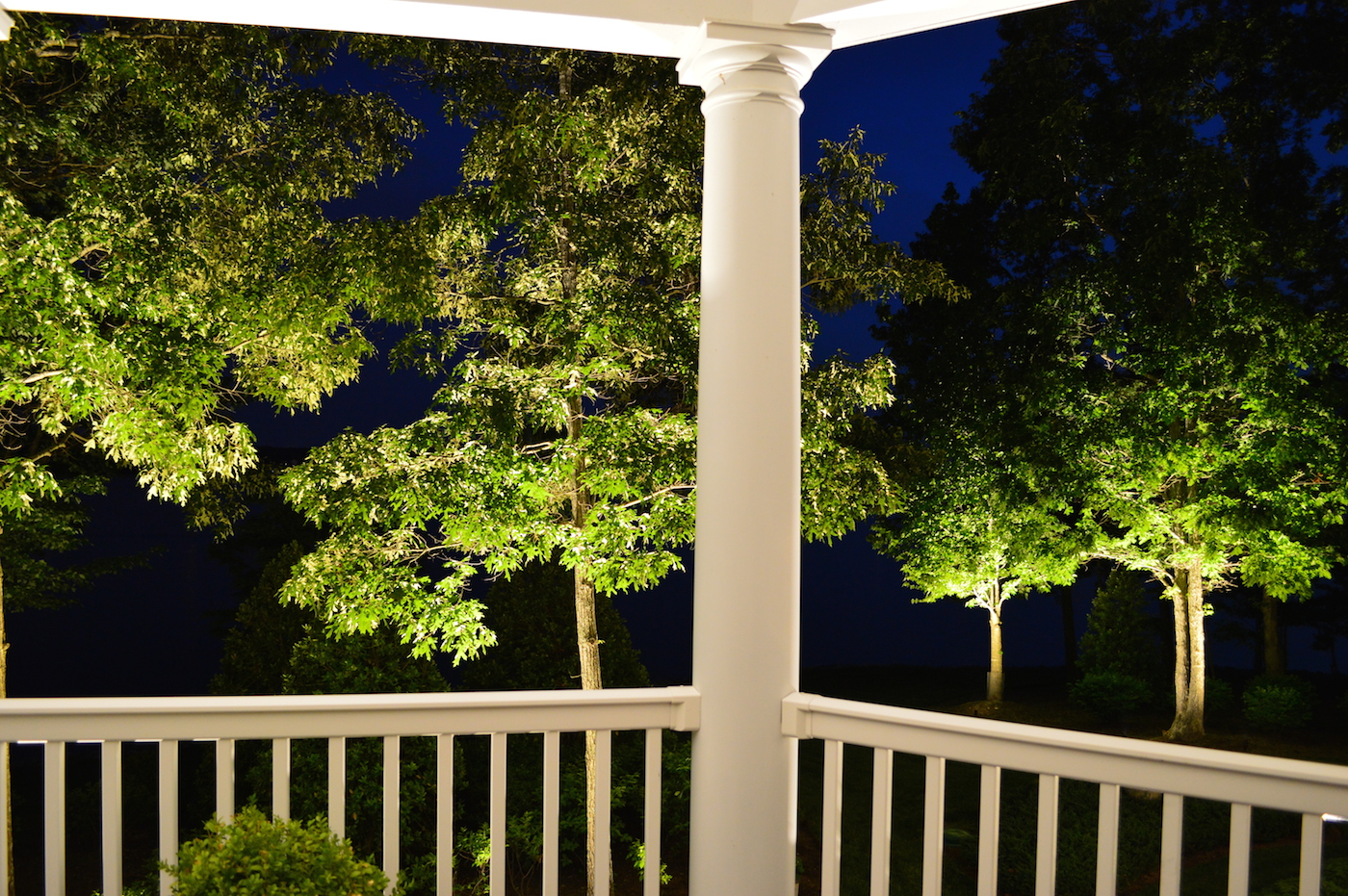 Backyard Lighting Tree View from a Porch in VA