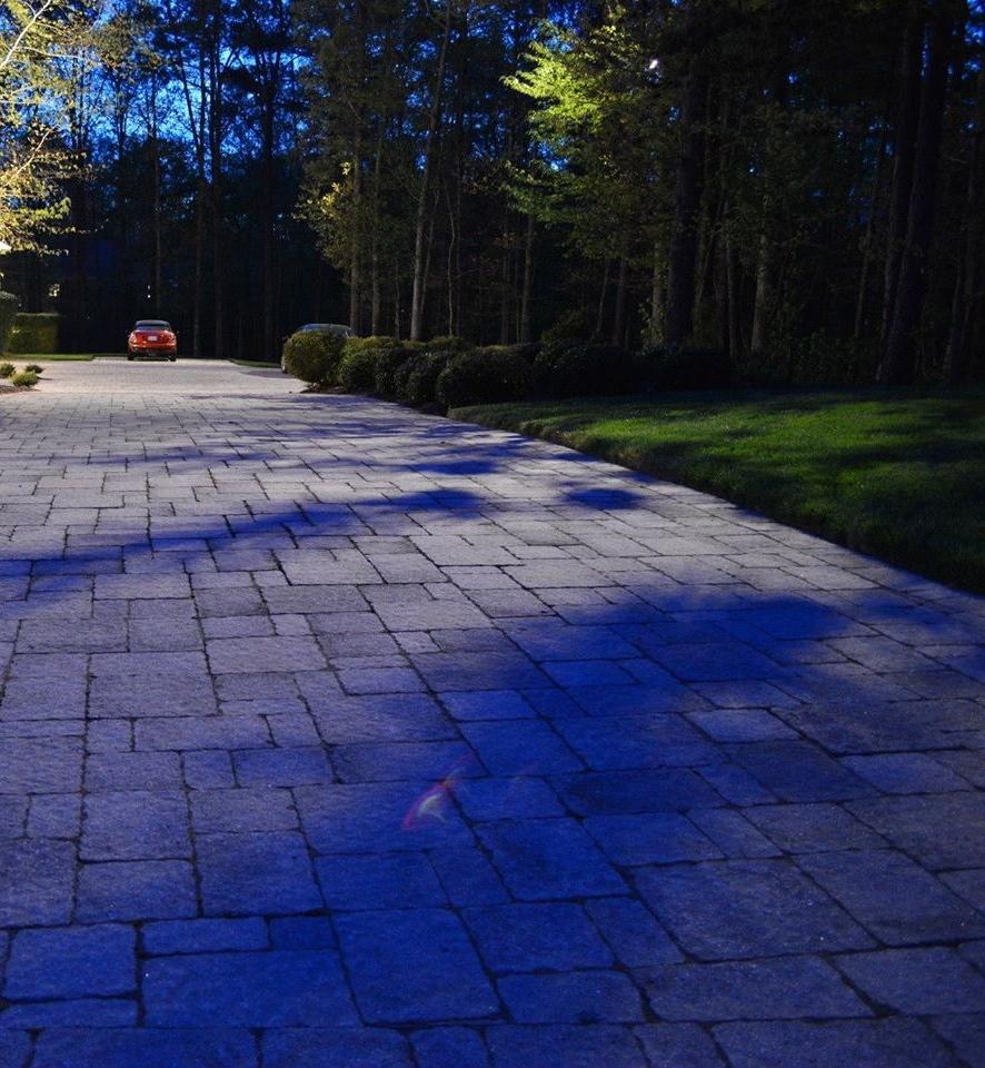 Driveway Lighting - Tree lighting