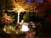 Outdoor Lighting in Virginia 2